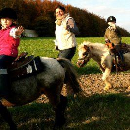 Ponytrack